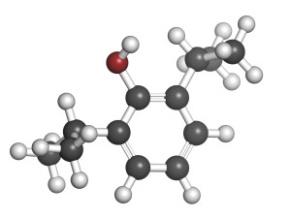 Propofol and Intralipid® exacerbate insulin resistance in type-2 diabetic rat hearts